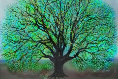 old-tree-in-spring
