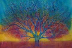 burning-tree